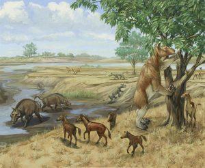 Michael Rothman 20th-21st Century Miocene Era habitat group