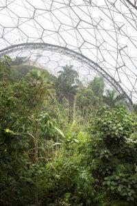 Alberto Giuliani, Eden Project Biospheres, Cornwall