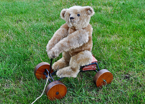 Lot #337: Steiff Record Teddy. Photo courtesy of Special Auction Services.