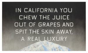 Ed Ruscha California Grape Skins