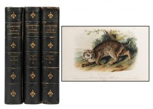 Potter & Potter Auctions March, 2021 Fine Books and Manuscripts Sale A Cover To Cover Success At Over $510,000 With A 96% Sell-Through Rate